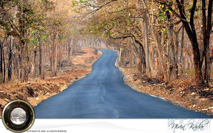 Dry-Road